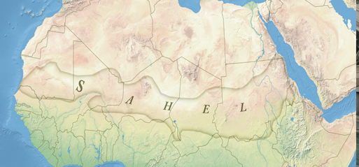 Fighting terrorism in Sahel in time of Corona