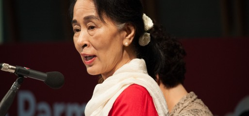 Peace laureate in denial over Rohingya Muslim genocide