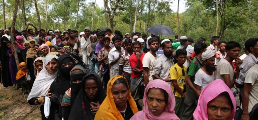 Myanmar: UN: 310,000 Rohingya Muslims flee, textbook example of ethnic cleansing
