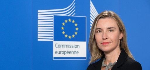 EU Condemns Israel's new illegal settlement