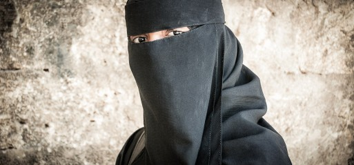 France's niqab ban 'violates' human rights, rules UN panel