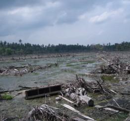 Indonesia: Sunda Strait tsunami kills 168, injures 745