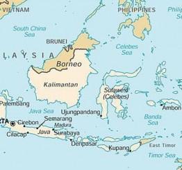 Indonesia: State of emergency in wake of 384 killed in quake, tsunami