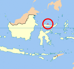 Indonesia: Quake kills 1, injures 22 in Maluku islands