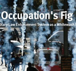 Palestine: Israeli rights group gives up on military legal system