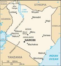 Kenya: Al-Shabaab kills 3 Americans in attack on Kenya base