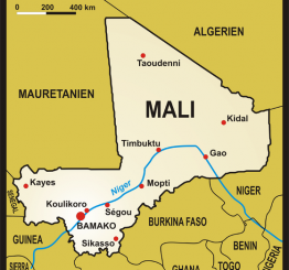 Mali: Muslim preacher stabbed, injured in Bamako
