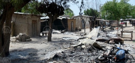 Nigeria: 7 killed as Boko Haram razes villages in Borno State