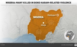Nigeria: Multiple explosions kill 12 in Borno State