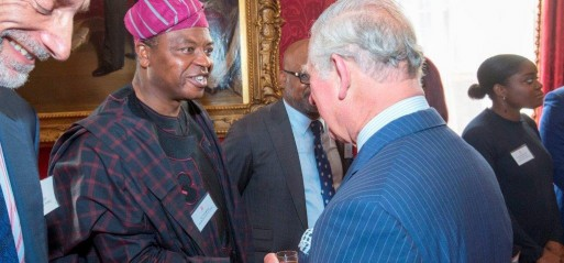 Nigerian Muslims among African dignitaries hosted at royal event