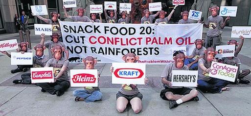 Palm Oil: Versatility amid controversy
