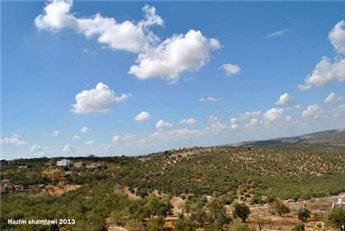 Palestine: Israeli settlers plough recently confiscated land near Salfit