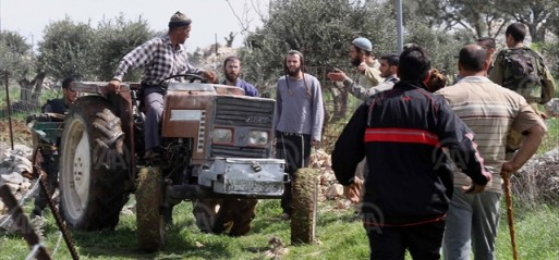 Palestine: Jewish settler attacks on Palestinians triple in 2018
