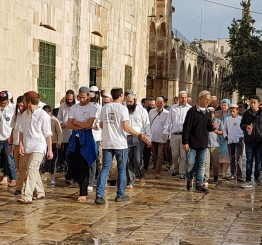 Palestine: Over 500 Israeli settlers storm Al-Aqsa Mosque compound in Jerusalem