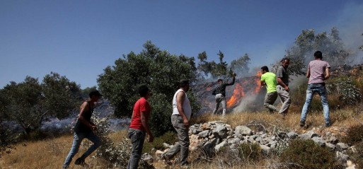 Palestine: Israeli settlers set fire to Palestinian lands in Nablus district