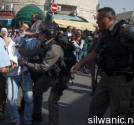 Palestine: Israeli army detains 4 children in Jerusalem