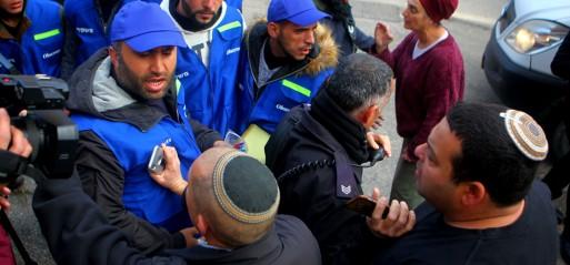 Palestine: Israeli settlers burn 400 olive trees in West Bank