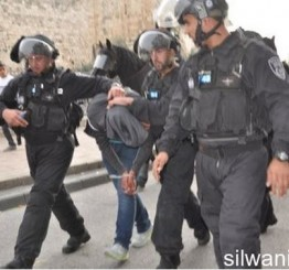 Palestine: 20 Palestinians kidnapped by Israeli soldiers in W Bank