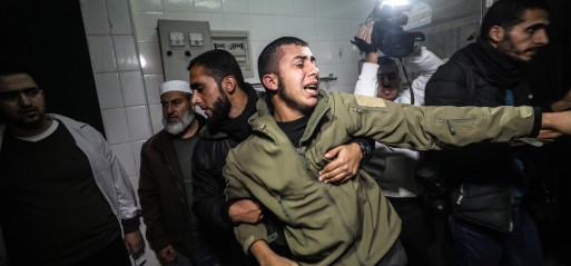 Palestine: Palestinian killed by Israeli airstrike in eastern Gaza