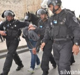 Palestine: 13 Palestinians kidnapped in W Bank, Jerusalem