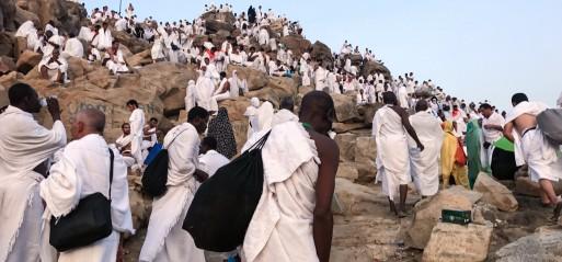 Saudi Arabia: Muslim pilgrims ascend Mount Arafat in Hajj climax