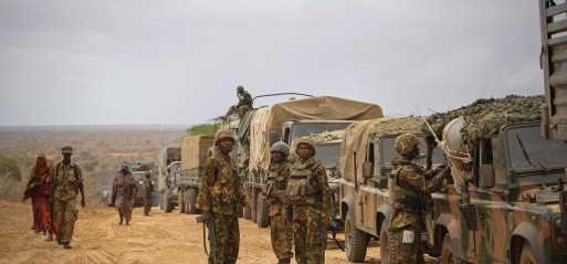Somalia: Kenyan military kills '19 al-Shabab militants'