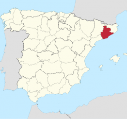 Spain: Niqabi pregnant Muslim woman assaulted