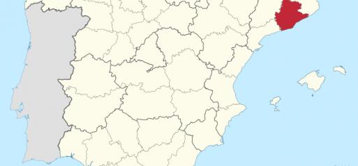 Spain: Niqabi pregnant Muslim woman assaulted