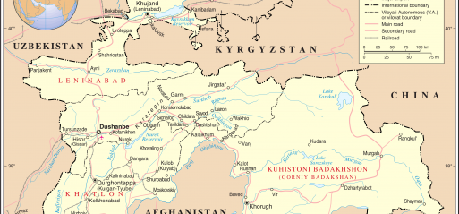 Tajikistan: Islamic Renaissance Party executives detained