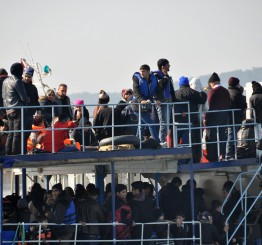 Turkey: 30 migrants rescued overnight from boat in Aegean