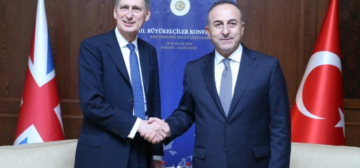 Turkey: UK to stand by Turkey in fight against terror