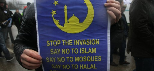 UK: Anti-Islam group PEGIDA holds rally in Birmingham