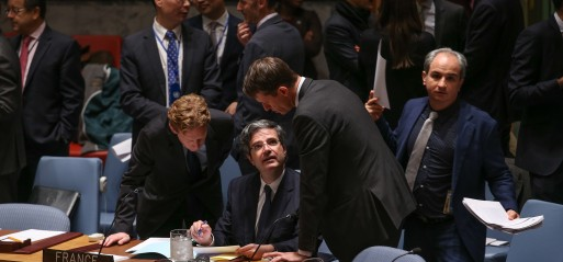 UNSC adopts French resolution on fighting Daesh