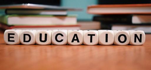 2020 GCSE & A-Level honour roll