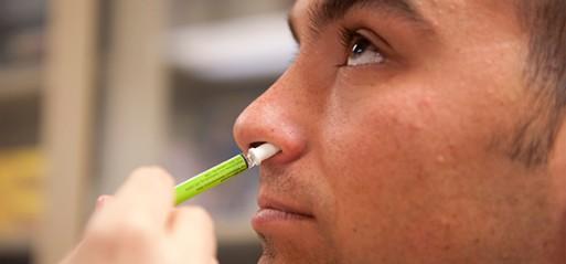 Pork gelatine used in nasal vaccines