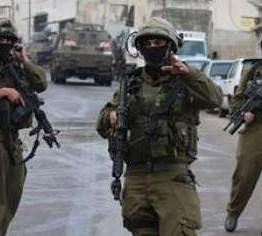 Palestine: Twelve Palestinians kidnapped by Israeli army in Hebron, Nablus