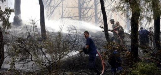 Lebanon: Fire engulfs Mount Lebanon forest, threatens homes