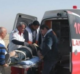 Palestine: Palestinian woman injured by hit & run attack by Israeli settler near Qalqilia