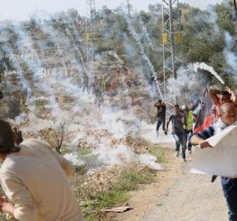 Palestine: Several Palestinians injured in Bil'in