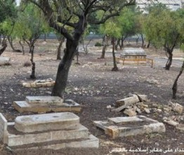 Palestine: Israeli forces demolish 20 tombs in Palestinian cemetery