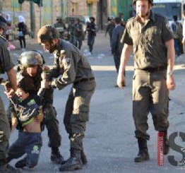 Palestine: Further youth detentions in West Bank cities
