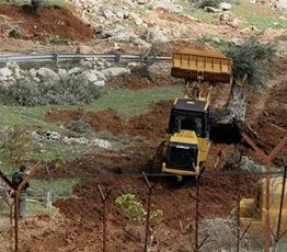 Palestine: Israeli bulldozers destroy agricultural structures, fields in Hebron