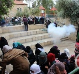 Palestine: Clashes reported in Occupied Jerusalem