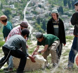 Palestine: Israeli settlers damage Palestinian wells in Jordan Valley