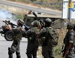 Palestine: Seven injured by Israeli army near Ramallah
