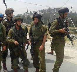Palestine: Dozens of Palestinians injured by Israeli army fire at al-'Arroub refugee camp,