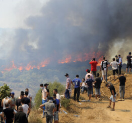 Algeria: Death toll from forest fires rises to 69