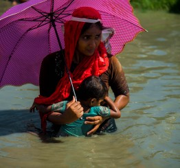 Myanmar: Mass destruction continues in Rakhine says rights body