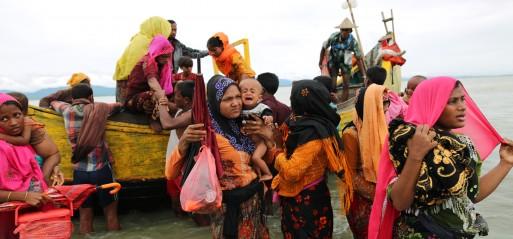 Myanmar kills 3,000 Rohingya Muslims in Rakhine