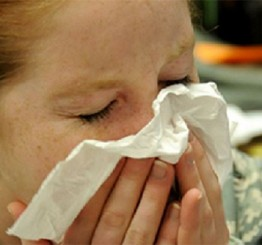 Can we cure the common cold?